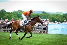 TNSteeplechase ♦ Sponsors / We thank each of our sponsors for their ongoing support and commitment to the Iroquois Steeplechase. If your company would like to become a sponsor please contact GeorgeAnn Dingus at georgeanndingus@iroquoissteeplechase.org. http://iroquoissteeplechase.org/sponsors/