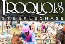 Iroquois Steeplechase ♦ 2015 / Held on the second Saturday of every May at Nashville's Percy Warner Park, the Iroquois Steeplechase is the premier spring race in American steeplechasing and Music City's traditional rite of spring – typically attracting more than 25,000 spectators. Since being designated in 1981 as the official charity of the Iroquois Steeplechase, the Monroe Carell Jr. Children's Hospital at Vanderbilt has received nearly $10 million from the event proceeds.