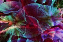Patterns / Textures