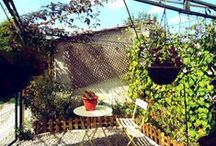 DIY Outdoor Garden / projects, ideas, inspiration for the garden outside