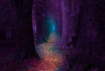 Fairy tale photography!