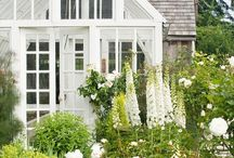 Garden / a collection of garden inspiration for a rainy day design project.
