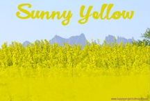 yellow / yellow inspiration