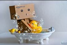 DANBO / Por el mundo  / By the world