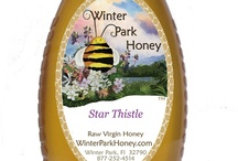 Star Thistle / Star Thistle Honey is a rare honey produced in the northwest United States. The nectar from the star thistle blossom produces a light delicate tasting honey. This is a highly sought after honey. It is difficult to find because the weather conditions must be just right for the bees to produce this honey. Enjoy this delicious honey while you can. Our supply won't last long.