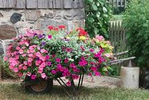 Flower Bed Ideas / Discover design ideas to make your flower beds even more appealing!