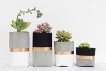 DIY projects for our home