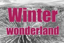Winter Wonderland / Snip-its of wonderful winter landscapes and tons of fun!