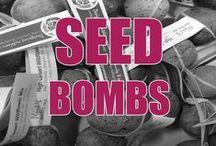 Bombs away, seed bombs