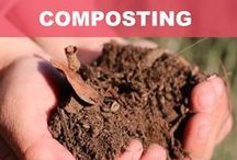 Ignite your COMPOST / MEANS, MATERIALS AND METHODS FOR A MAGIC COMPOST PILE.