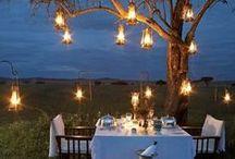 Lanterns, Lights, Bare bulbs / Magical Settings