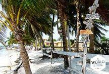 My Belize is Yours / Toen ik Belize voor het eerst op een landkaart bekeek, geloofde ik dat vaste land eerlijk gezegd wel een beetje.Wat je op een kaart niet kunt zien, is wat er onder het oppervlak gebeurt. En duik je dieper in het water van de Caraïben, dan gaat er nog een heel nieuwe wereld open.