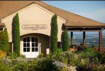 Wineries: Chehalem Valley Oregon / Let us help you plan your Willamette Valley Oregon Wine Tasting experience at our Chehalem Valley Visitor's Center in Newberg: 115 North College Street, Newberg, OR 97132 (503) 538-2014 chehalemvalley.org