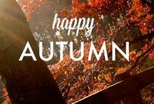 Autumn with PartyLite! / Discover Holiday Joy! Great gift ideas, 50 exclusive fragrances and a whole heap of beautiful new collections!