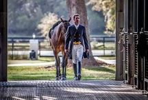 02 | EQUESTRIAN - Style / Here you'll find inspiration to help craft an authentic luxury equestrian experience.