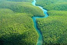 Their Suriname is Yours / Suriname door de ogen van anderen. Zij laten jou hun Suriname zien. Meer inspiratie om op eigen houtje naar Suriname te reizen vind je op http://www.myworldisyours.nl/places/suriname