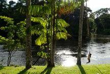 My Suriname is Yours / Het heden is veel mooier, veel leuker ook; Bami eten bij Blauwgrond, fietsen door de Palmentuin, een Parbo biertje drinken bij 't Vat. En nu gaan we de Surinamerivier achterna. Langs het Brokopondo stuwmeer vliegen we kilometers lang over 'het bos': de voorloper van het Amazonewoud. Vlak naast het vliegveld ligt daarna in de rivier een korjaal te wachten, die ons een half uur wegvaart van het laatste stukje bewoond Suriname. We gooien onze rugzakken achterin. Het avontuur kan nu echt beginnen.