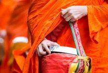 Their Laos is Yours / Beelden van reizen in Laos door de ogen van anderen. Van trekkings in Muang Sing tot chillen op Don Det, van de Franse cultuur in Luang Prabang tot de backpackersscene van Vang Vieng en van de gemoedelijkheid van het Bolaven Plateau tot de tempels van Vientiane. Alle travel foto's komen op dit bord samen: bergen, tempels, food, mensen, steden en natuur!