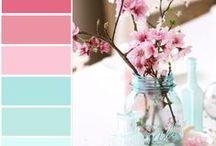 colour palet