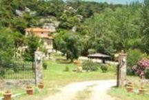 Alexander Haus / Family owned studio in Koviou Beach, Sithonia, Halkidiki