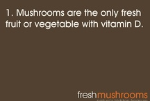 fun MUSHROOM facts  / All things MUSHROOMS  / by Kitchen Pride