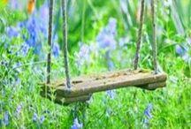 * Gardening Tips & Ideas *