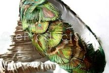 Natural Feather Designs / Natural Feather Angel Wings Handcrafted at eproductsales.com