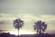 ✧☽ FAVORITE PLACES ☾✧