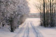 seasonal comforts : winter.