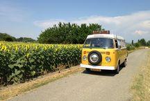 (For our) VW van / Westfalia