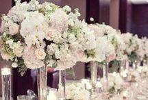 Glamorous/Elegant Weddings