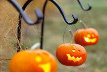 halloween / by Tasha Anderson