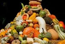 Fall Fruit and Veg Photos