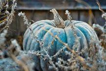 Autumntales~
