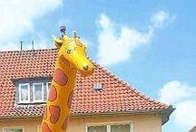 Wohnen in Hamm / Bilder rund um das Wohnen in Hamm.
