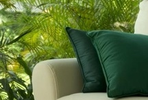 Green Home / Looking for #eco home projects to do that won't set you back a lot of money but can also help the #environment?  Transform your home into an eco haven.  Express your unique style and with eco awareness. www.TaigaCompany.com