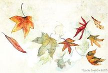 Lisa McLoughlin Art / I create evocative nature-themed artwork that has a quirky, soft, depth of beauty... I also create Plant Ally cards . http://www.lisamcloughlinart.com/product/plant-ally-cards/