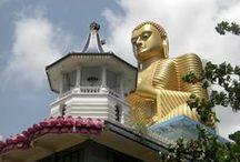 Sri Lanka Highlights / Sri Lanka (Srilanka), Perle im Indischen Ozean, bietet seinen Besuchern eine breite Auswahl an Hotels sowie zahlreiche Möglichkeiten für Rundreisen, Stopover und Reisebausteine. ✔ http://bit.ly/srilanka-tourism