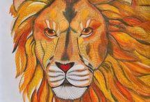 My colouring - Wild Savannah / Colouring book - Wild Savannah, Millie Marotta