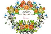 My colouring - Secret Garden / Colouring book - Secret Garden, Johanna Basford