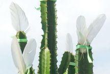 I ♥ green / Plants, gardening, outdoor, nature
