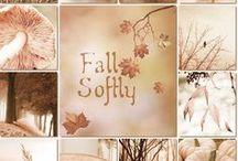 Autumn / Az Ősz világa.