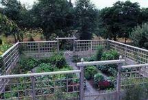 Deerproof Garden