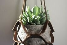 Cement Planters / Inspiration for some plants to go into the new Shorthand office