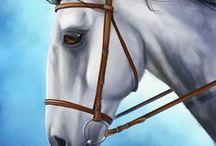 Horses / horses in my art