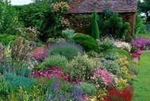 Garden ideas / Ideas & Things to grow