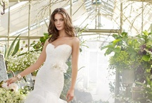 Spring 2012 / Chic and sleek, traditional Tara Keely bridal gowns are a staple on your Wedding day!