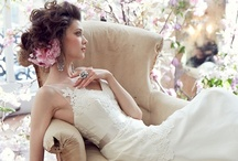 Fall 2013 / Classic Tara Keely bridal gowns incorporating southern charm with a modern feel.