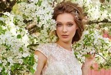 Tara Keely Fall 2015 Bridal Collection / Tara Keely wedding gowns for the elegant and graceful bride to be. Embroidered illusion bodices, low backs and classic silhouettes.