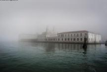 Nature : Fog & Mist
